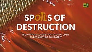 Spoils of Destruction: Villagers fight palm oil giant to reclaim rainforest (Trailer) Premiere 05/04