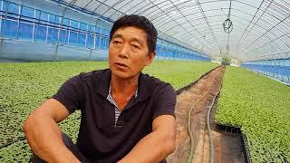 농작물마다 거름주는 30가지방법