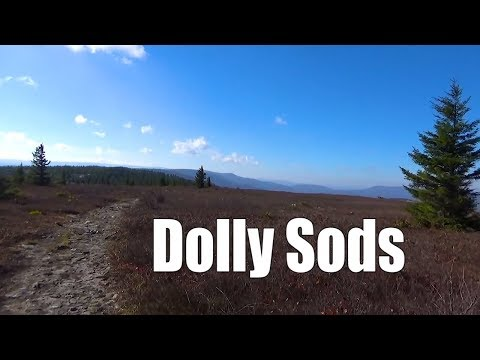 Late Fall Backpacking the Dolly Sods, West Virginia