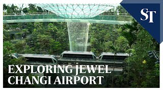 What to eat, see and do at Jewel Changi Airport | The Straits Times