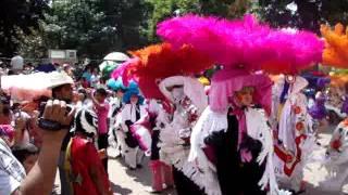 carnaval tlaxcala 2011 (tenancingo)