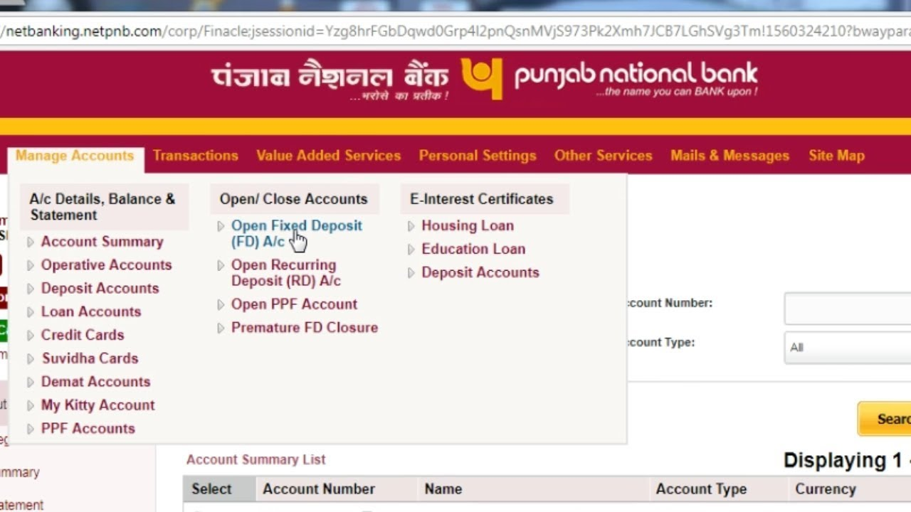 internet banking service pnb