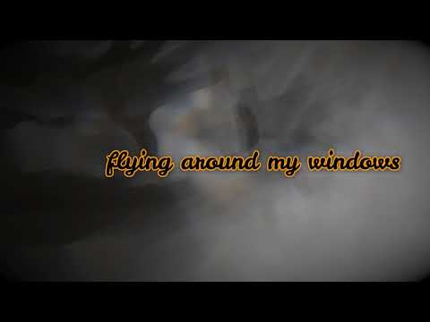 early morning ghosts video haiku by penny michelle taylor