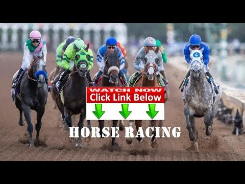 Horse Racing Breeders' Cup: Travers Stakes LIVE STREAM