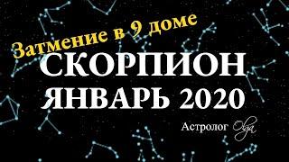 СКОРПИОН ГОРОСКОП на ЯНВАРЬ 2020. Астролог Olga