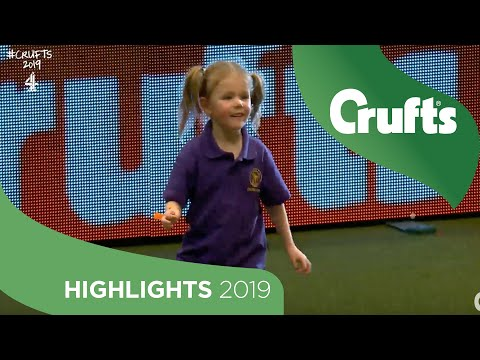 5-Year-Old Izzy Keeps Her Cool As Milo The Dog Takes A Wander | Crufts 2019