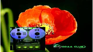 Oromo Music - Ali Birra