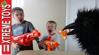 Wild Crow Steals Fidget Spinner! Wild Toy Feathered Beast Vs. Ethan Vs. Cole Nerf Blaster Battle!