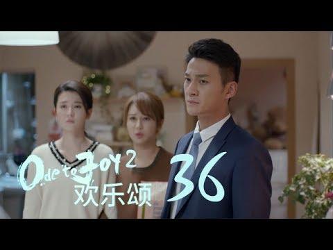 歡樂頌2 |  Ode to Joy II 36【TV版】(劉濤、楊紫、蔣欣、王子文、喬欣等主演)