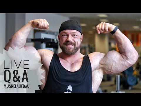 Alles über Muskelaufbau?!