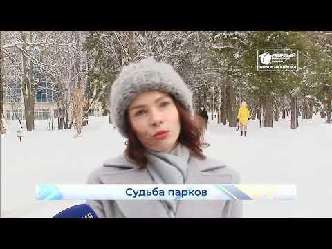 ОНФ проверил качество городской среды  Новости Кирова  26 02 2020