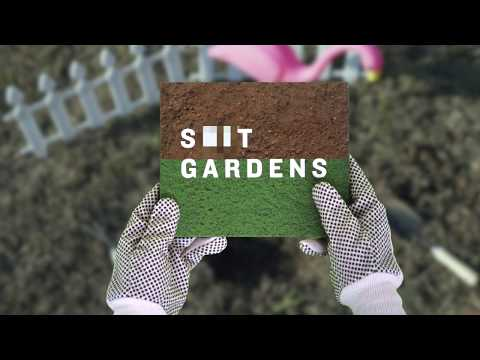 Shit Gardens By James Hull and Bede Brennan