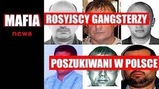 ROSYJSCY GANGSTERZY POSZUKIWANI PRZEZ POLSKĄ POLICJĘ | Mafia News