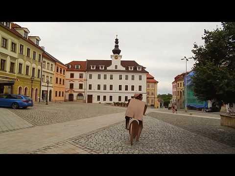 Travel in Europe. Czechia/Česko. 06.08.2017. Královéhradecký kraj. Hradec Králové.