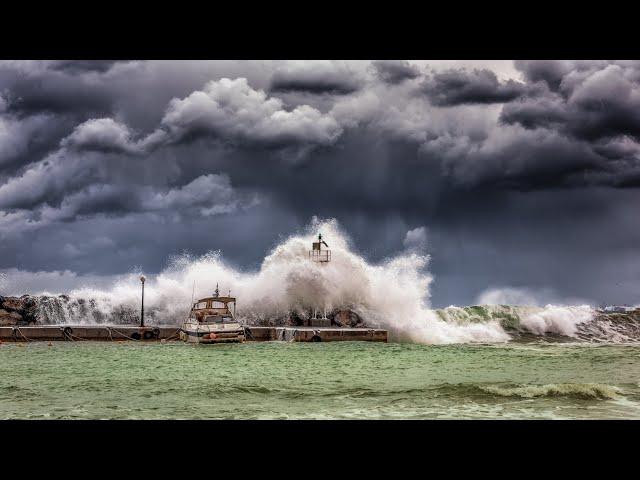 Harry's Video Blog - Silence of The Flood: Parshat Noach