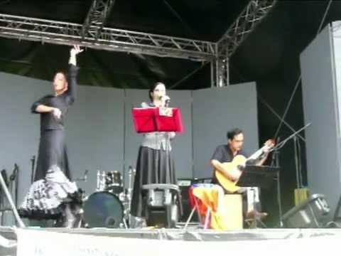 Fête de la Musique 2012 à Genève le 24 juin - scène Agrippa, association AMJ