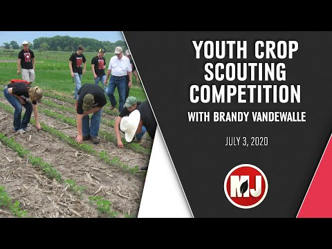 Youth Crop Scouting Competition   Brandy VanDeWalle   July 3, 2020