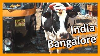 India - Bangalore