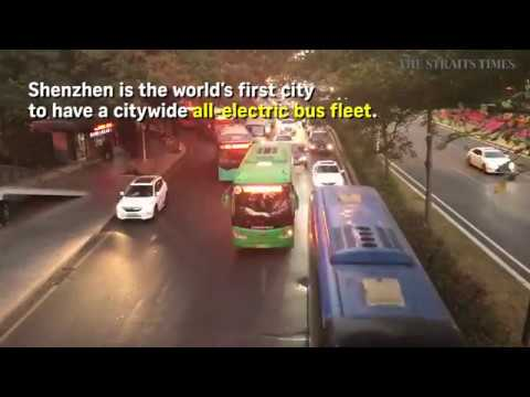Shenzhen leads the way in switch to electric buses
