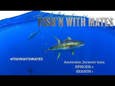 Fishn With Mates Season1 Ep2 Ascension Island Jurassic Park Tuna