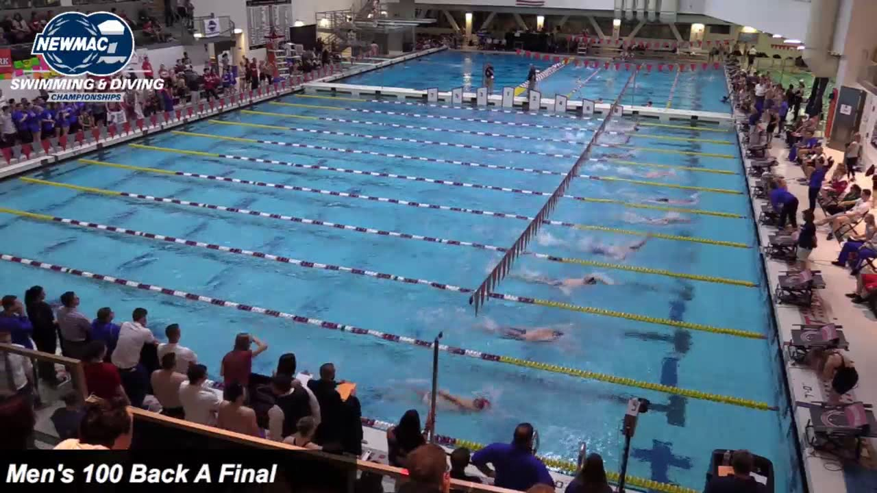 Pool Bauer wpi swimming diving bauer 100 back