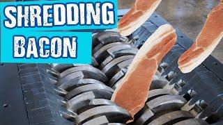 Shredding Bacon - Shredding Stuff