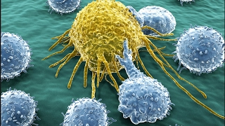 New Genetically Modified Herpes Virus Now Fights Cancer!