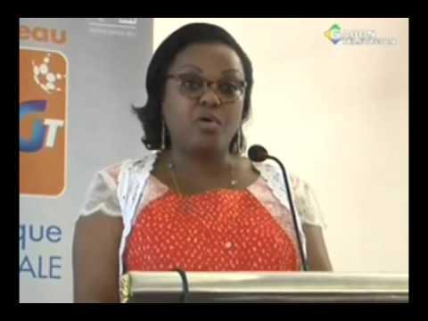 RTG/société-La direction générale de Gabon Telecom face à la presse nationale