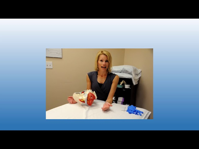 Physical Therapy Pelvic Muscle Exam Female