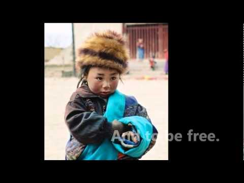 Human Rights Violations - Tibet