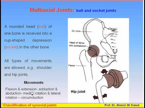 joints dr Joint Pain: Causes and Pain Relief Options - WebMD