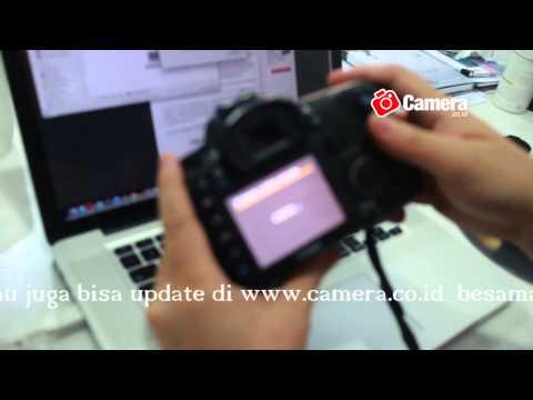 Firmware Camera Canon, Nikon
