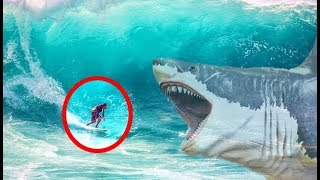 6 Real Life Megalodon Shark Encounters & Sightings Around The World | Compilation