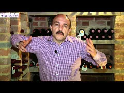 BA du vin avec Gérard Basset (Version Française) - Episode 01