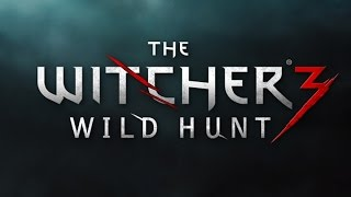 The Witcher3,Where Are The Blacksmiths In Novigrad Location