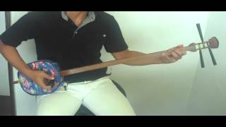 三味線の棹を沖縄三線の胴に付けてメタリカを弾いてみました。