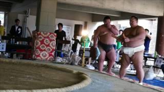 6月25日に小豆島町立小豆島中学校の土俵で第29回わんぱく相撲・小...