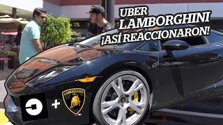 UBER Lamborghini  | ¡¡ASÍ REACCIONAN!!