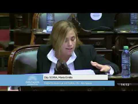 Mirá la polémica intervención de Soria en Diputados