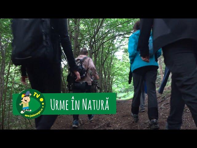 Urme în natură - Junior Ranger