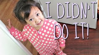I DIDN'T DO IT! - June 15, 2016 - ItsJudysLife Vlogs