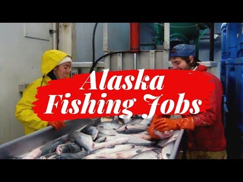 How To Find Entry Level Alaska Fishing Jobs