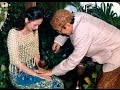 siraman and midodareni 10 mei 2003 dr.sylviana c h