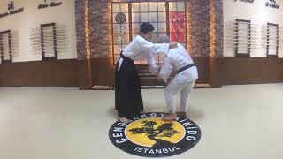 Ushiro Waza Eridori Kotegaeshi