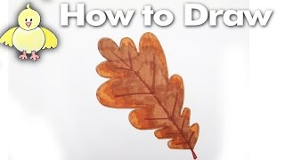 How to draw an easy Oak Leaf step by step