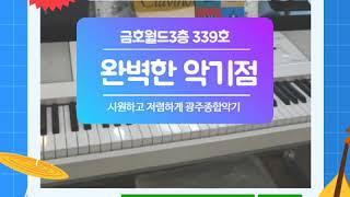 [광주종합악기] 야마하공식대리점 339호