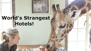 5 Strange Hotels Around the World!