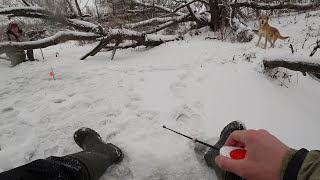 Куда пропал Карай Зимняя рыбалка на безмотылку