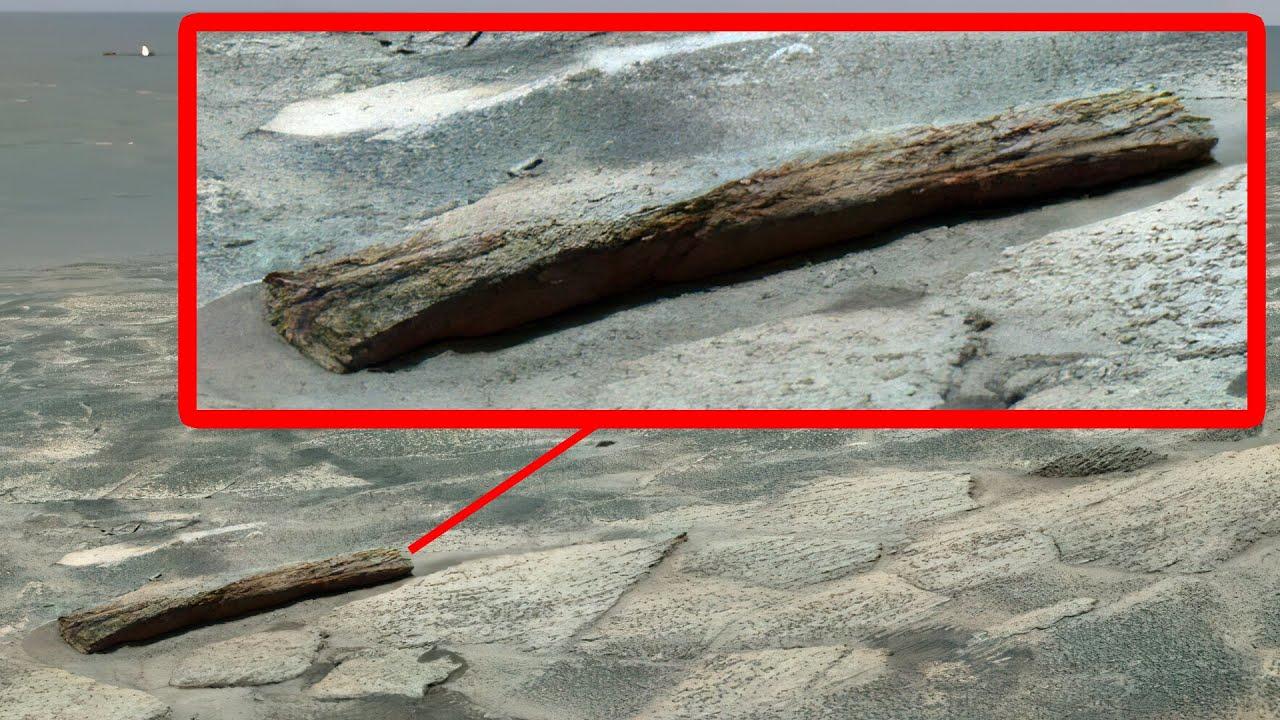 Download supuesta madera tallada y en descomposición capturada en marte - Opportunity | cráter Endúrense