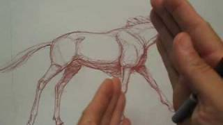 Draw the Wildebeest part 3 of 3